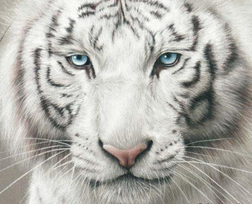 meilleur artiste animalier, commande de portrait animalier d'après photos, peinture et pastel