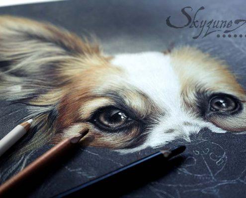 meilleur artiste animalier, pastelliste, commande de portrait animalier d'après photos, peinture et pastel