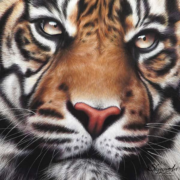dessin tigre, tableau art animalier : une tête de tigre, réalisé avec la technique du pastel sec, avec fond moderne graphique.. art de luxe. Meilleur artiste pastelliste peintre animalier.