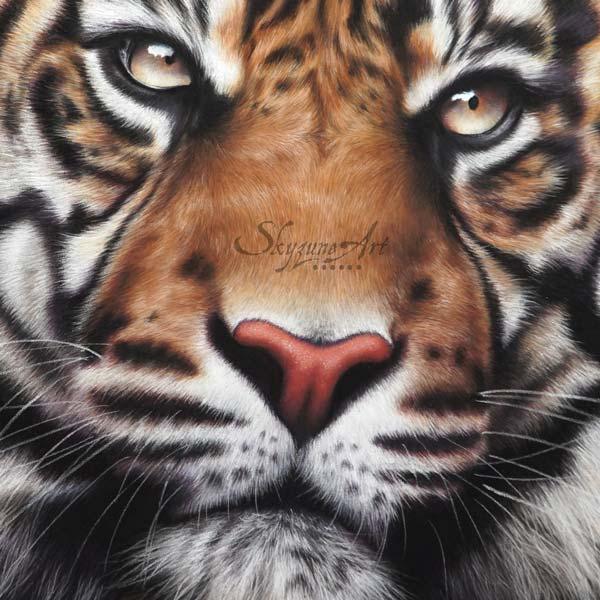 dessin tigre portrait tableau Art animalier : une tête de tigre, réalisé avec la technique du pastel sec, avec fond moderne graphique.. Meilleur artiste pastelliste animalier.