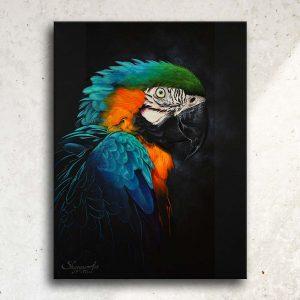 Art animalier : tableau RAINBOW FEATHERS, avec un ara bleu, réalisé avec la technique de la peinture acrylique, sur fond noir moderne et graphique. Meilleur artiste peintre animalier.