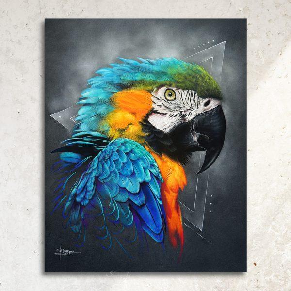dessin oiseau, tableau perroquet par SKYZUNE ART, artiste peintre équin et animalier, art de luxe, meilleur artiste animalier déco, design, art de luxe