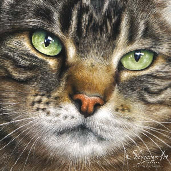 Portrait chat ou portrait animalier sur commande d'après photos, style réaliste, d'un chat européen, réalisé avec la technique du pastel sec par Skyzune ART. Meilleur artiste peintre et pastelliste animalier.