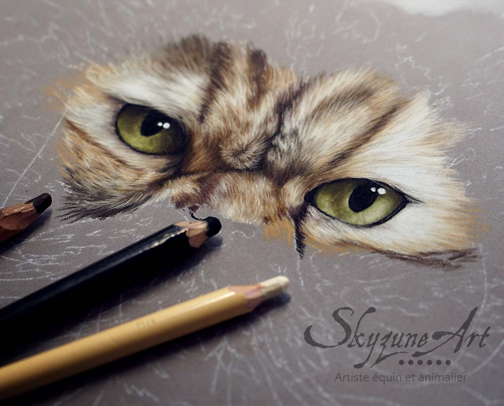 portrait chat pastel sec en cours de réalisation. tableau peinture portrait photo félin chat, art artiste peintre animalier