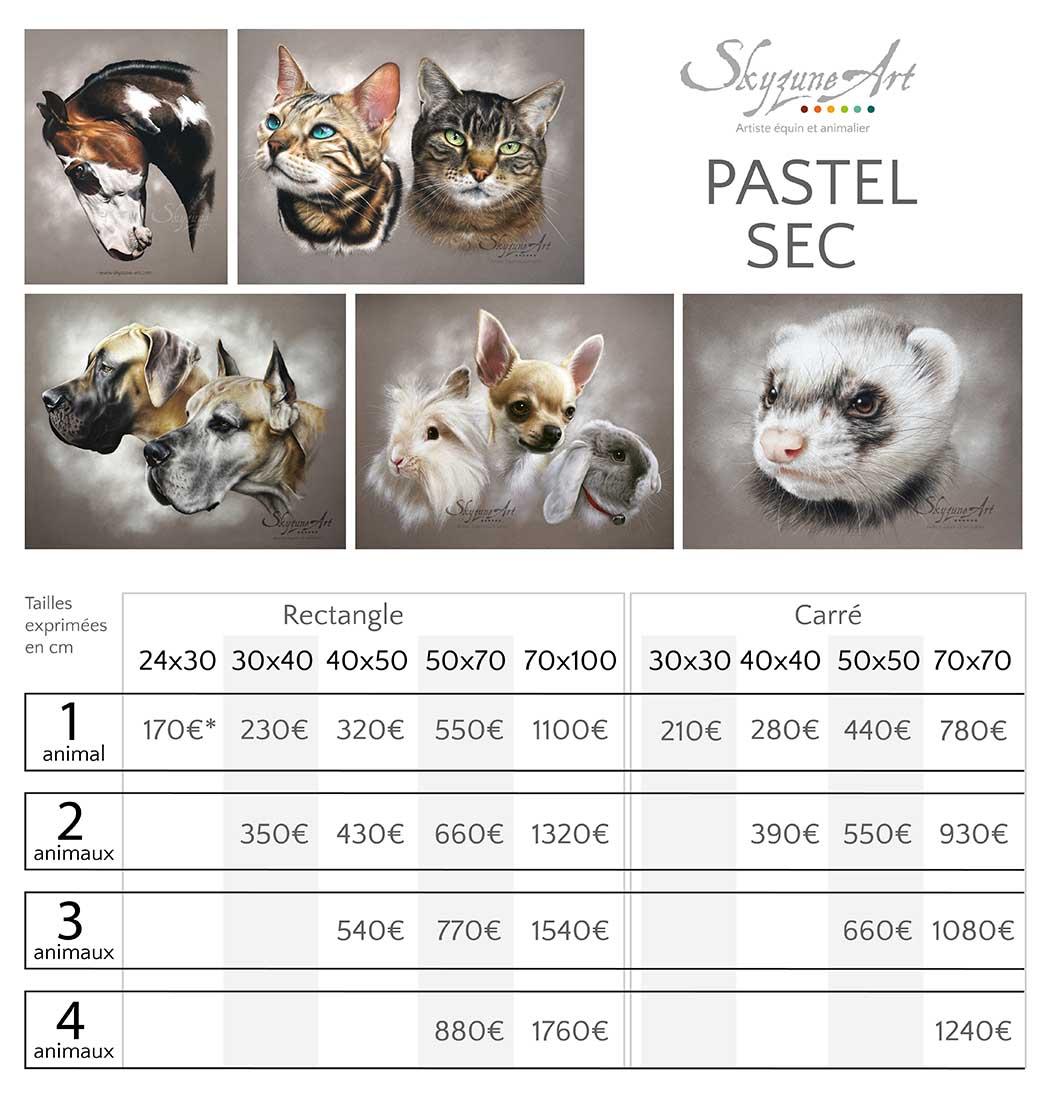 Tarifs des commandes de portraits animaliers d'après photos, au pastel sec, meilleur artiste animalier.