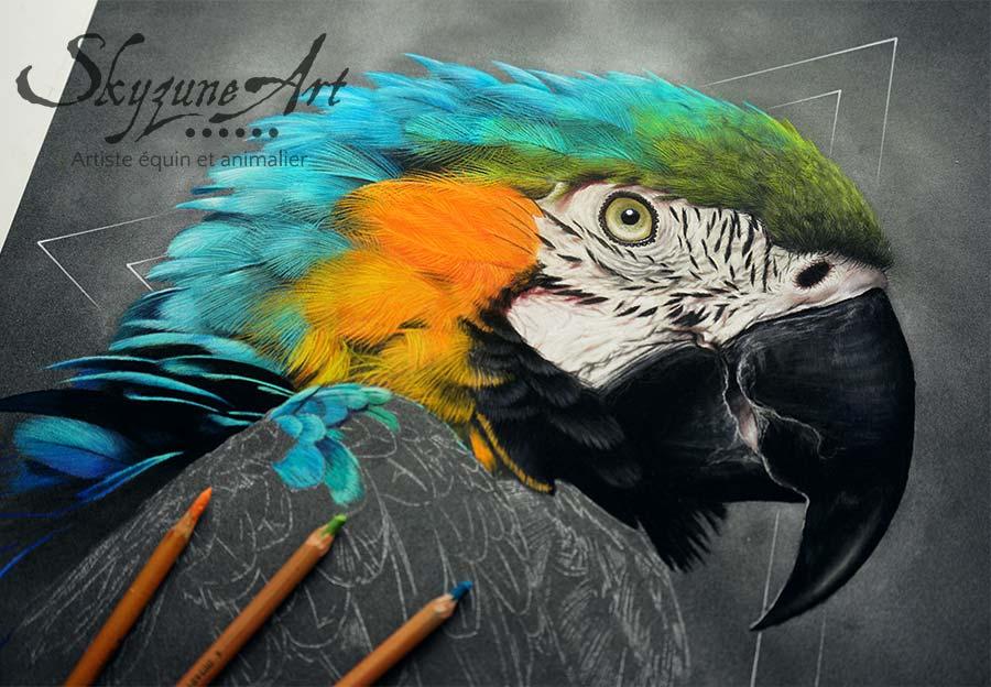 dessin oiseau exotique, faune sauvage, tableau perroquet par SKYZUNE ART, artiste peintre équin et animalier, art de luxe, meilleur artiste animalier déco, design, art de luxe