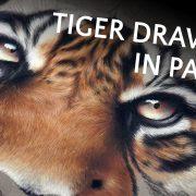Peintre animalier contemporain, fauve sauvage, Vidéo d'un dessin avec un tigre réalisé au pastel sec, meilleur artiste peintre animalier, comment dessiner, apprendre